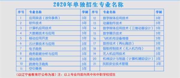 2020沈阳北软信息职业技术学院单招专业