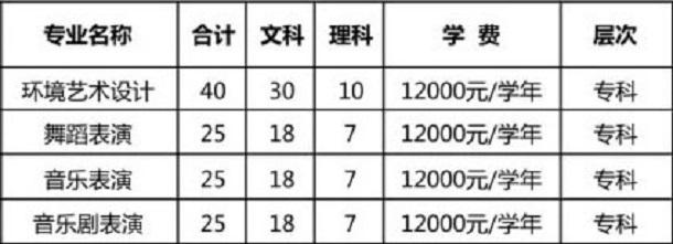郑州西亚斯学院2020年河南艺术类招生计划